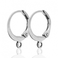 Stainless steel closable earrings with loop Silver