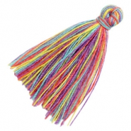 Tassels basic 3cm Multicolour Rainbow Purple