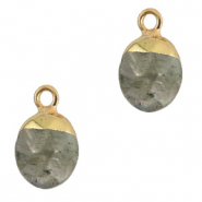 Natural stone charms Fossil Grey-Gold