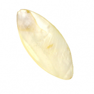 Shell beads oval Vanilla Yellow