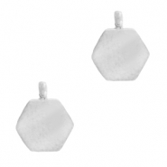 Stainless steel charms hexagon Silver