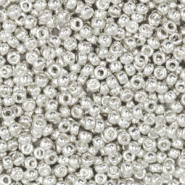 Miyuki seed beads 11/0 Bright Sterling Silver Plated 11-961